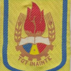 Emblema ,  Pionieri - Tot Inainte (se poate prinde de costum cu 2 ace)