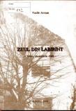 ZEUL DIN LABIRINT, SIBIU DECEMBRIE 1989 DE VASILE AVRAM, Alta editura