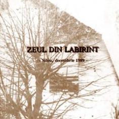 ZEUL DIN LABIRINT, SIBIU DECEMBRIE 1989 DE VASILE AVRAM - Carte Istorie