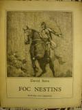 David Sava - Foc nestins ( copilaria si tinereatea lui Avram Iancu, ilustratii de Mircea Dumitrescu ) - 1979