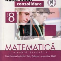 MATEMATICA ALGEBRA, GEOMETRIE - CULEGERE PT CLASA A VIII A PARTEA I de ANTON NERILA MATE 2000+ CONSOLIDARE ED. PARALELA 45 - Culegere Matematica