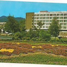 #carte postala(ilustrata) - BAIA MARE-Hotel Carpati