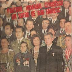 (C4585) REVISTA FEMEIA, NR.12 DECEMBRIE 1974