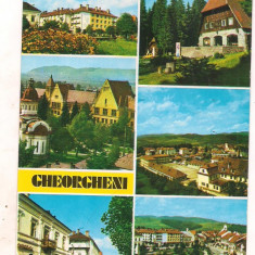 #carte postala(ilustrata) - GHEORGHIENI-jud Harghita