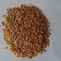 Seminte Goji (Lycium Barbarum) - Seminte de goji