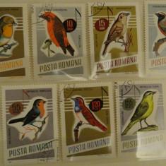 Serie pasari cantatoare 1966 - Lot B102 timbre Romania - stampilate