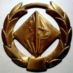 5.209 MEDALIE ROMANIA SPORT GIMNASTICA F.R.G CAMP. R.S.R. MAESTRI 1972 65mm - Medalii Romania
