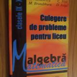 ALGEBRA * CULEGERE de  PROBLEME cl. IX - XII - C. Nastasescu, C. Nita - 1996