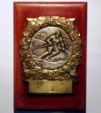 5.213 PLACHETA ROMANIA SPORT SCHI CAMPIONAT DEPARTAMENT CASTIGATOR 1951 134/90mm