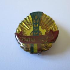 RARA! INSIGNA FRUNTAS COOP(NU IN COOP. DE CONSUM!), Romania de la 1950