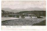 645 - Hunedoara, PETROSANI, pod de mocanita - old postcard - unused