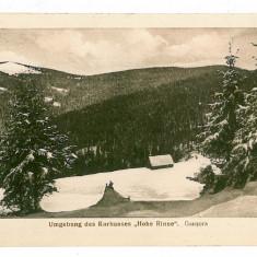 587- Sibiu, Hohe Rinne, GAUSORA - old postcard - unused - 1917 - Carte Postala Transilvania 1904-1918, Necirculata, Printata