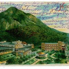 318 - L i t h o, Baile HERCULANE - old postcard - used - 1906 - Carte Postala Banat 1904-1918, Circulata, Printata