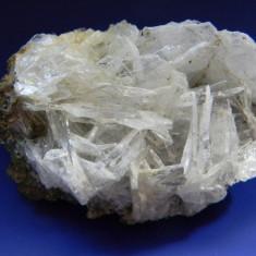 Specimen minerale - BARITINA ALBASTRA - Fosila roca
