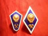2 Insemne Militare -Absolvire Academia Militara- Ingineri Militari URSS