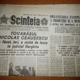 Ziarul scanteia 3 aprilie 1977 ( vizita lui ceausescu in jud. harghita )