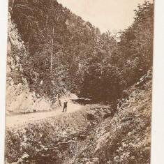 Zarnesti Valea raului 1924