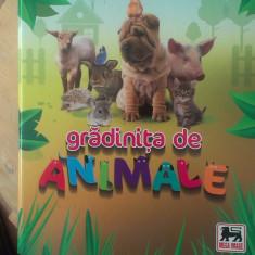 Album Gradinita de animale - Mega Image