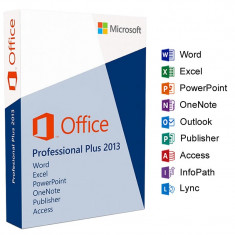 Office Profession 2013 32bit/64bit Medialess - Solutii business