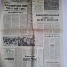 Ziar Scanteia 5 aprilie 1974