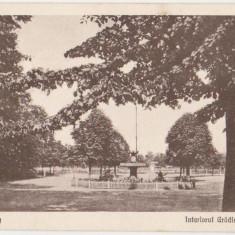 Roman, Interiorul Gradinii Mari, circulata la Botosani in 1924 - Carte Postala Moldova dupa 1918