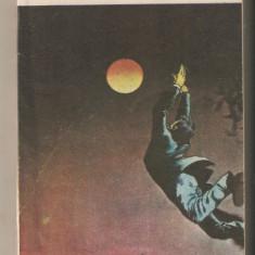 Cicerone Sbantu-Apele inaintea marii - Roman, Anul publicarii: 1991