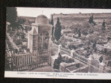 Jerusalem,gradina Ghetimani.Carte postala necirculata,de la 1910.Reducere!