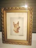 Borka de IFES- Caine ciobanesc german, tablou in creion colorat., Animale, Carbune, Realism
