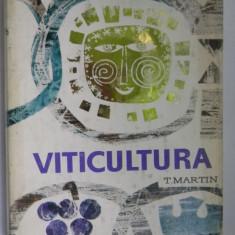 VITICULTURA T.Martin
