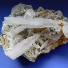 Specimen minerale - CUART - Fosila roca