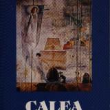 Simon Wiesenthal - Calea sperantei - Carte de calatorie, Rao