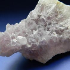 Specimen minerale - CUART - var. AMETIST - Fosila roca