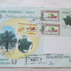10-PLIC-LUNA PADURII 2003