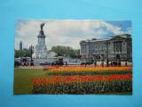 MOKAZIE !!!! HOPCT 8132 ANGLIA LONDRA -BUCKINGHAM PALACE, Europa, Necirculata, Printata