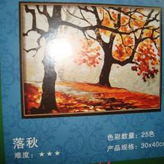 Panza pentru pictura (desen numerotat) - culori acrilice numerotate incluse, 30x40 cm - Tablou autor neidentificat