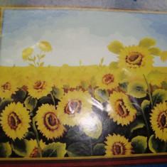 Panza pentru pictura (desen numerotat) - culori acrilice numerotate incluse, 40x50 cm
