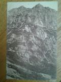Carte postala Siebenburgische Karpathen Butschetsch Muntii Carpati Meridionali Bucegi editie Hermannstadt 1917 necirculata timbru Romania Transilvania