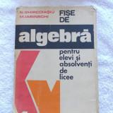 FISE DE ALGEBRA PENTRU ELEVI SI ABSOLVENTI DE LICEE- N GHIRCOIASIU, M IASINSCHI - Manual scolar