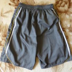 Pantaloni scurti EVERLAST, Greatness is Within; marime M, vezi dimensiuni exacte - Bermude barbati Everlast, Marime: M, Culoare: Din imagine