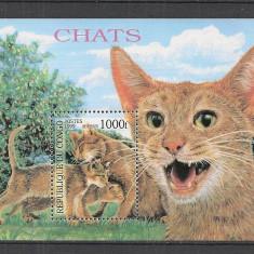 Congo (Brazzaville).1999 Rase de pisici-Bl.  MC.234