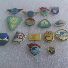 Lot insigne Companii de Turism
