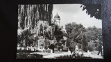 CP - Vedere  - Radauti - Vedere din parc - circulata 1968