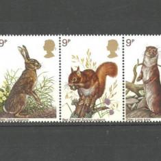 ANGLIA 1977 - FAUNA ANIMALE SALBATICE MICI, serie nestampilata (un timbru usor indoit) V44 - Timbre straine, Europa, Natura