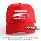 SAPCA, SEPCI TRUCKER, cu plasa, snapback - THINKING PLEASE WAIT - exclusiv !