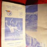 Caiet Prezentare- Trofeul Carpati Handbal 1980