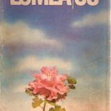 LUMEA/86 - CAIET DE VACANTA