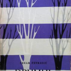 DRUMUL CU PLOPI - Cezar Petrescu - Roman, Anul publicarii: 1961