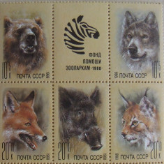 RUSIA 1988 - ANIMALE SALBATICE, 5 VALORI NEOBLITERATE - E1844