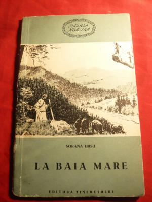 Sorana Ursu - La Baia Mare - Ed.Tineretului 1956 foto