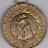 Medalie sport UTC CUPA TINERETULUI DE LA SATE 1970-LUPTE-locul III. - Medalii Romania